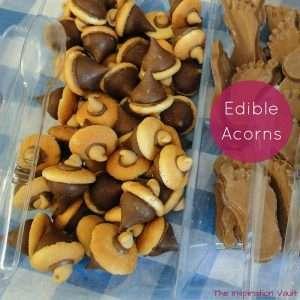 Edible Acorns Feature