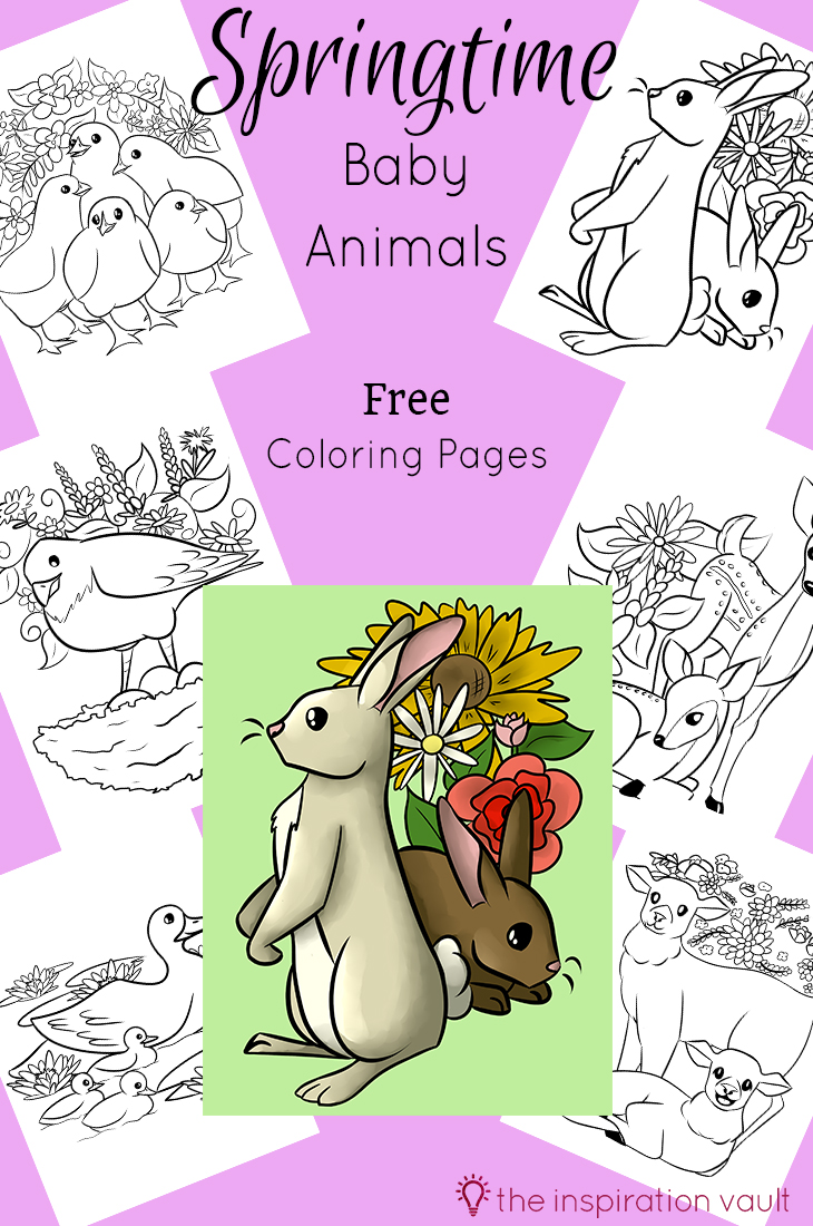 Springtime Baby Animals Free Coloring Pages for Kids and Adults