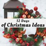12 Days of Christmas Ideas