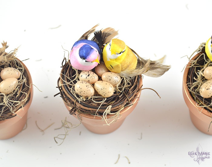 Mini Clay Pot Bird's Nests Step 6b